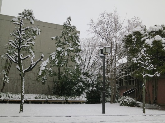 white everywhere, in between the buildings no exception ... (photo: henri daros)